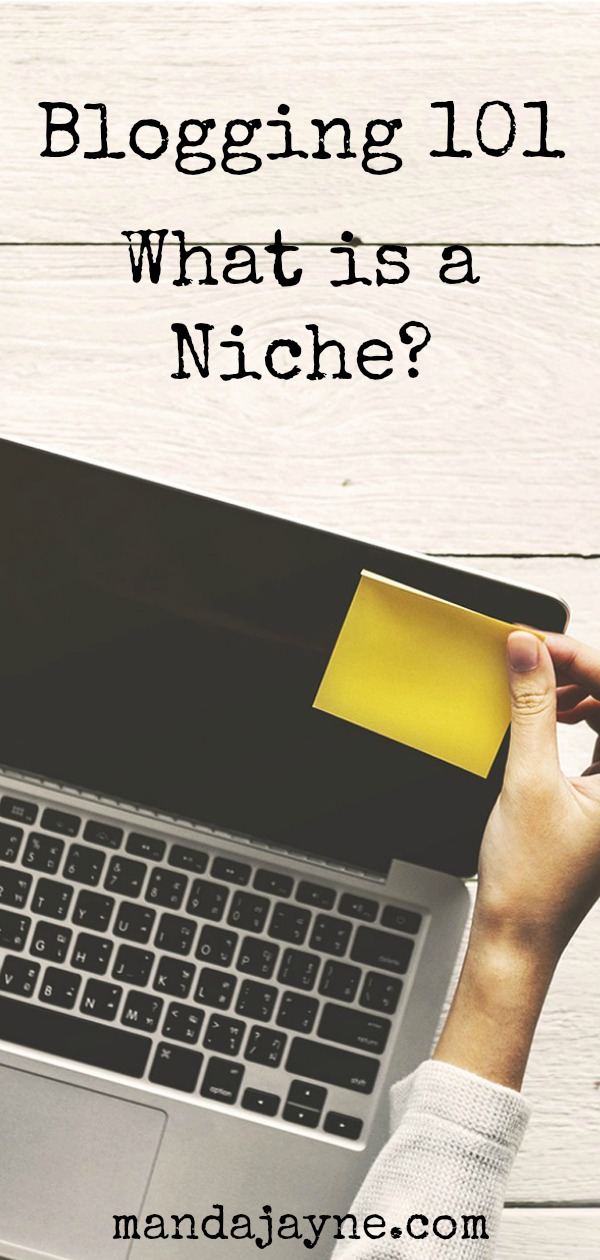 Blogging 101: What's a niche?